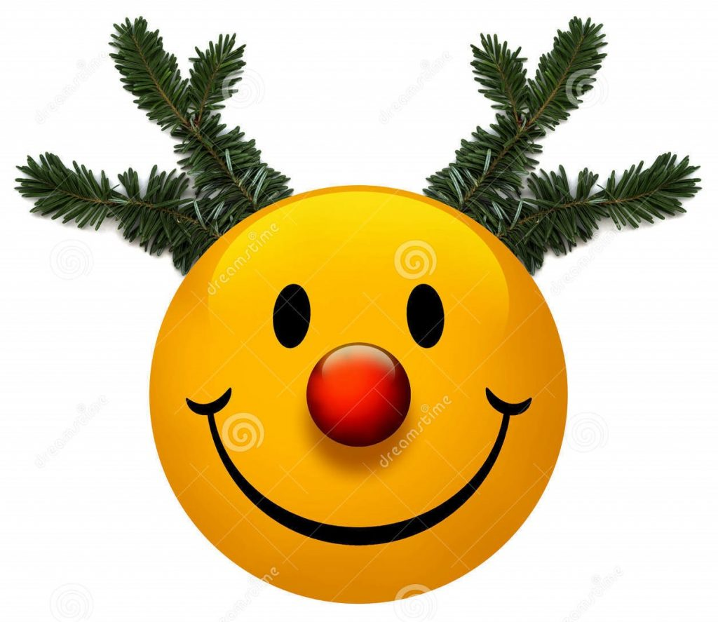 smiley-holiday-icon-17205833